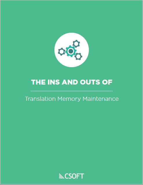 The Ins and Outs of Translation Memory Maintenance
