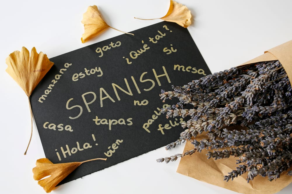 Considerations When Planning for Spanish Translation